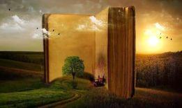 Книги о смысле жизни: ТОП-13 бестселлеров