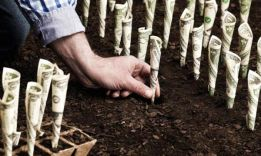 Куда вложить деньги в кризис: эффективные инструменты