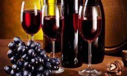 Вино чистит мозг: вывод ученых из Копенгагена