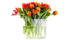 Необычные подарки жене в качестве вдохновения для 8 марта!