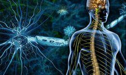 Тест на рассеянный склероз: хорошая у тебя память?