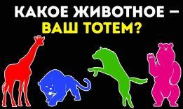 Тест на тотемное животное: 10 вопросов + индейский гороскоп