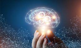 На сколько процентов работает человеческий мозг?