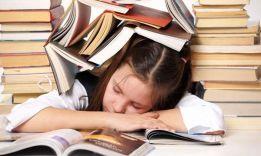 Почему стоит выбрать Diplomers.com: ТОП-4 достоинства компании