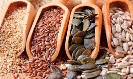 Идея для домашнего бизнеса: торговля семенами