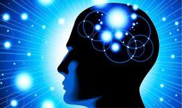 Что такое психология: 8 основных сфер