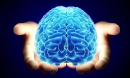 Как развивать мозг?
