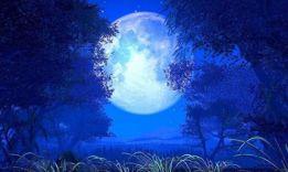 ТОП-2 научных теории, почему Луна светится