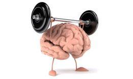 Как улучшить работу мозга?