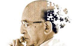 Болезнь Альцгеймера — это опасно: симптомы и стадии развития