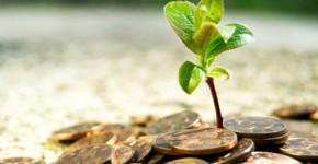 kuda-investirovat-dengi-vlozhite-dengi-v-zemlyu