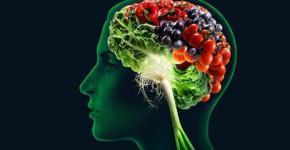 produkty-dlja-mozga-top-10-produktov-dlja-mozga