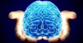 kak-razvivat-mozg