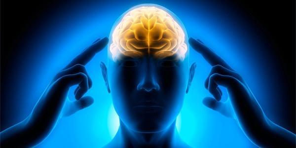pomoshhniki-kotorye-podsobjat-vam-razvivat-mozg