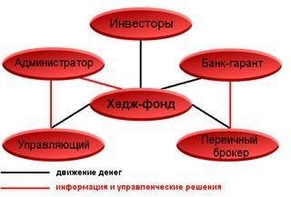 prostaja-shema-struktury-hedzh-fonda