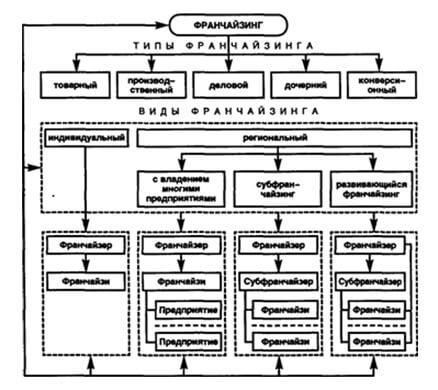 struktura-franchajzinga