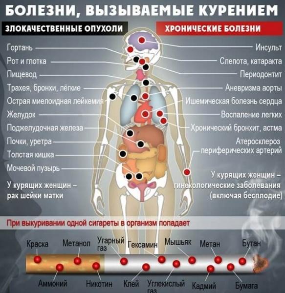 bolezni-vyzyvaemye-kureniem