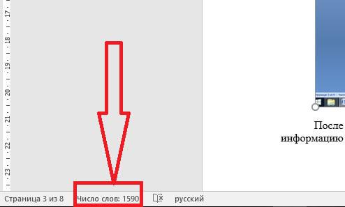 chislo-slov-na-stranice