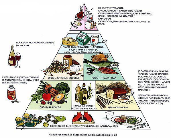 piramida-pravilnogo-pitanija