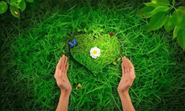 ljubov-k-prirode