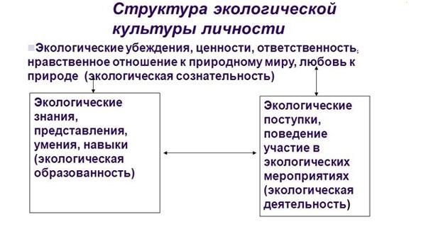 struktura-jekologicheskoj-kultury-lichnosti