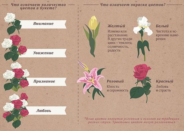 jazyk-cvetov