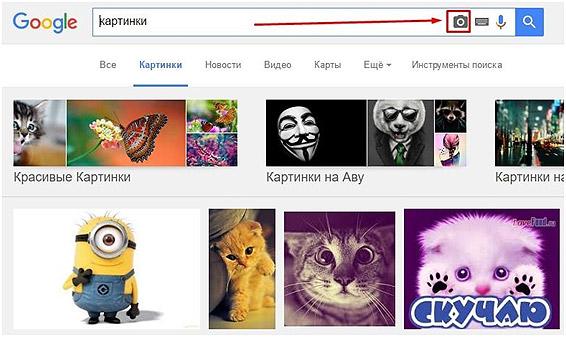 ssіlka-adres-images-google-com