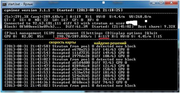 servis-Wmzona-skachivanie-programmy