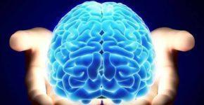 test-na-vozrast-mozga