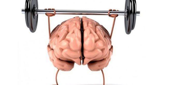molodost-mozga