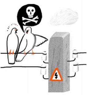 provodnik-dlja-toka