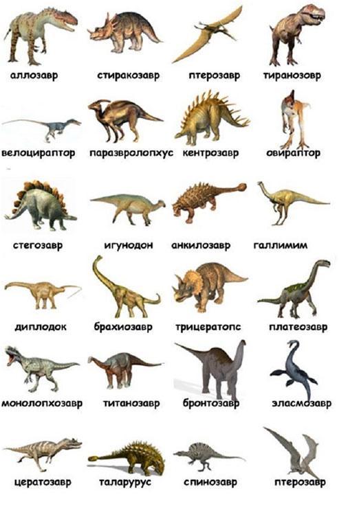 vidy-dinozavrov