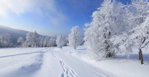 pochemu-sneg-belyj