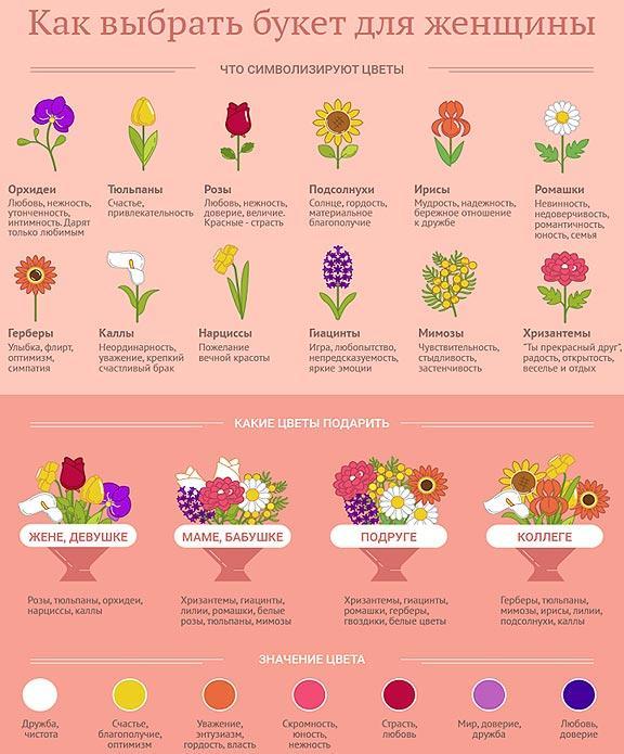 simvolika-cvetov