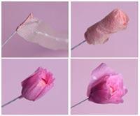 smasterite-cvetok