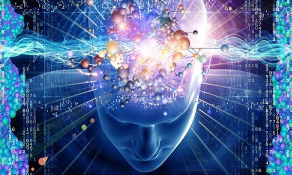 mozg-i-informacija