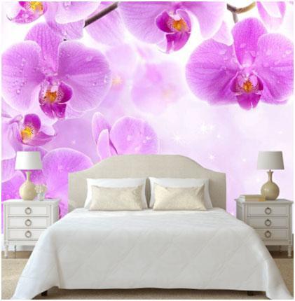 fotooboi-orhidei